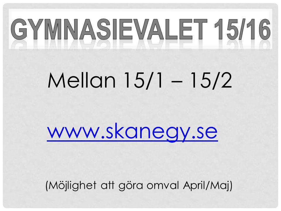 Mellan 15/1 – 15/2 www.skanegy.se (Möjlighet att göra omval April/Maj)