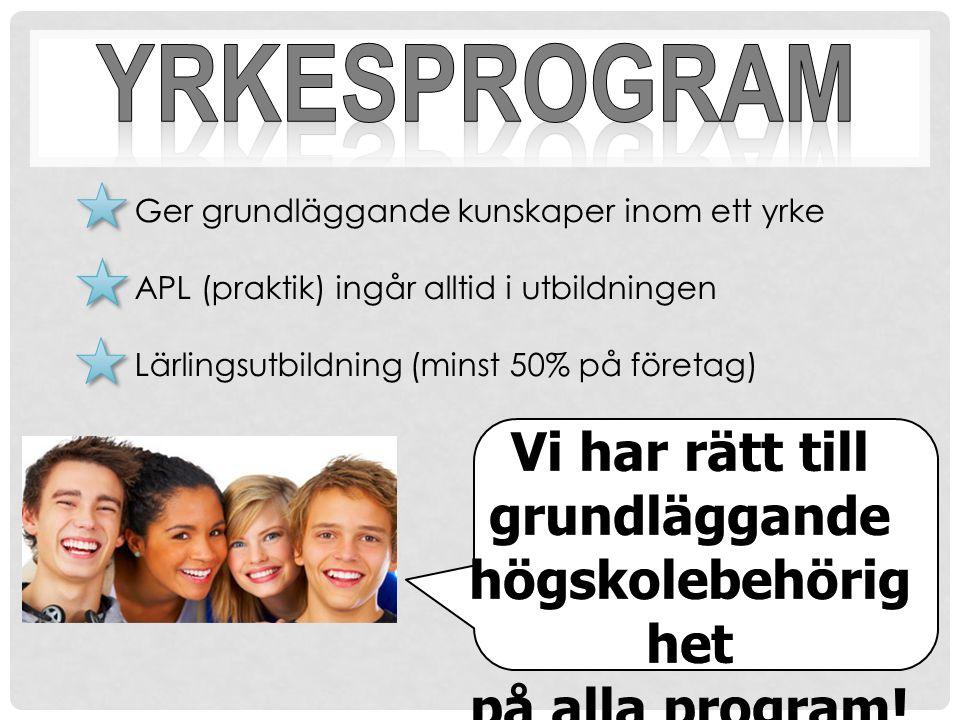 Ger grundläggande kunskaper inom ett yrke APL (praktik) ingår alltid i utbildningen Lärlingsutbildning (minst 50% på företag)