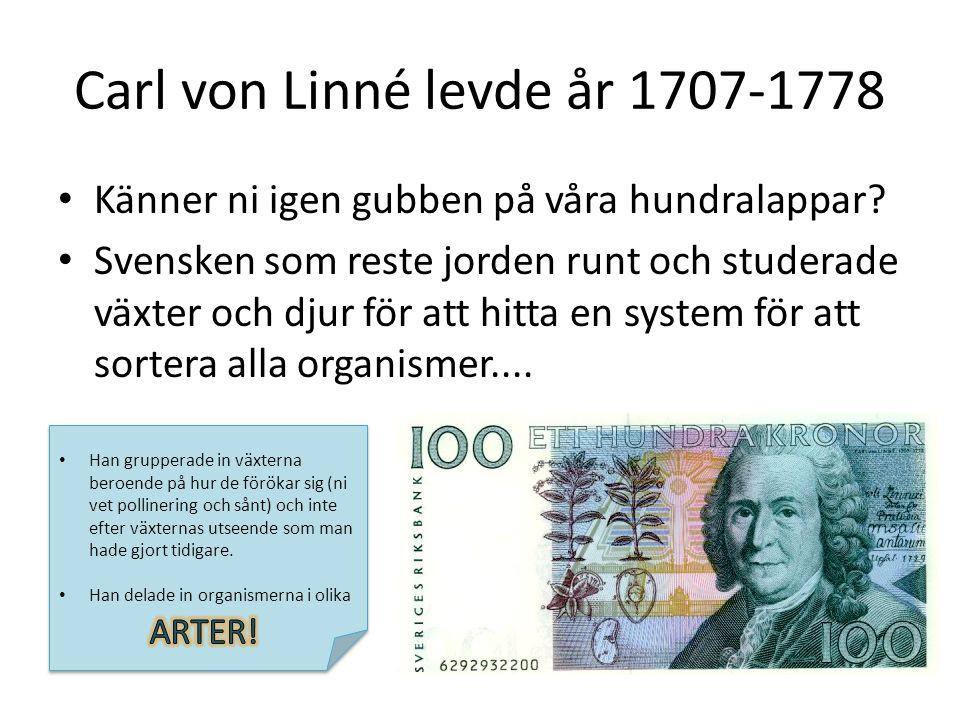 Carl von Linné levde år 1707-1778 Känner ni igen gubben på våra hundralappar? Svensken som reste jorden runt och studerade växter och djur för att hit