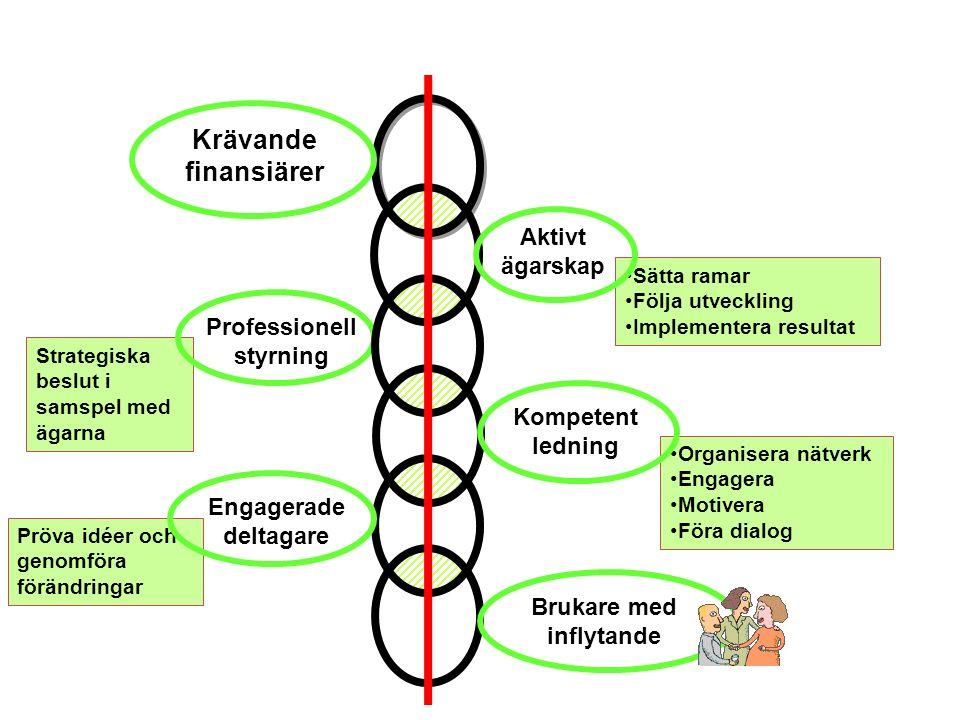 Strategiska beslut i samspel med ägarna Sätta ramar Följa utveckling Implementera resultat Pröva idéer och genomföra förändringar Professionell styrni