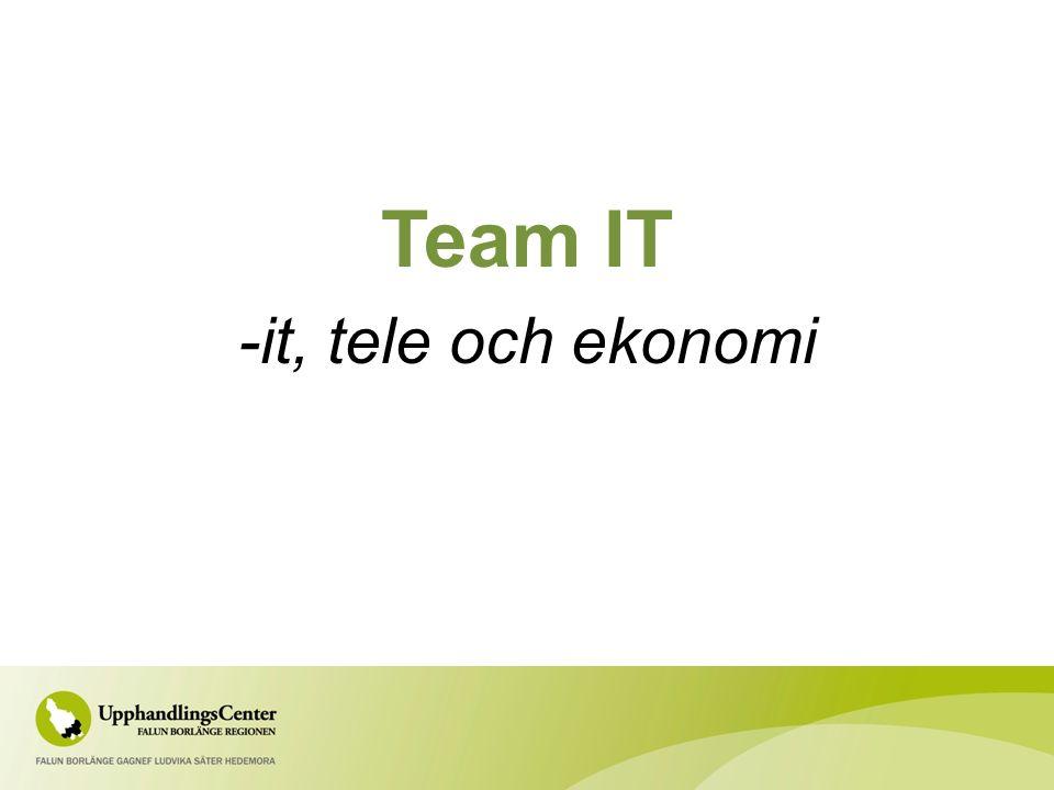 Team IT -it, tele och ekonomi