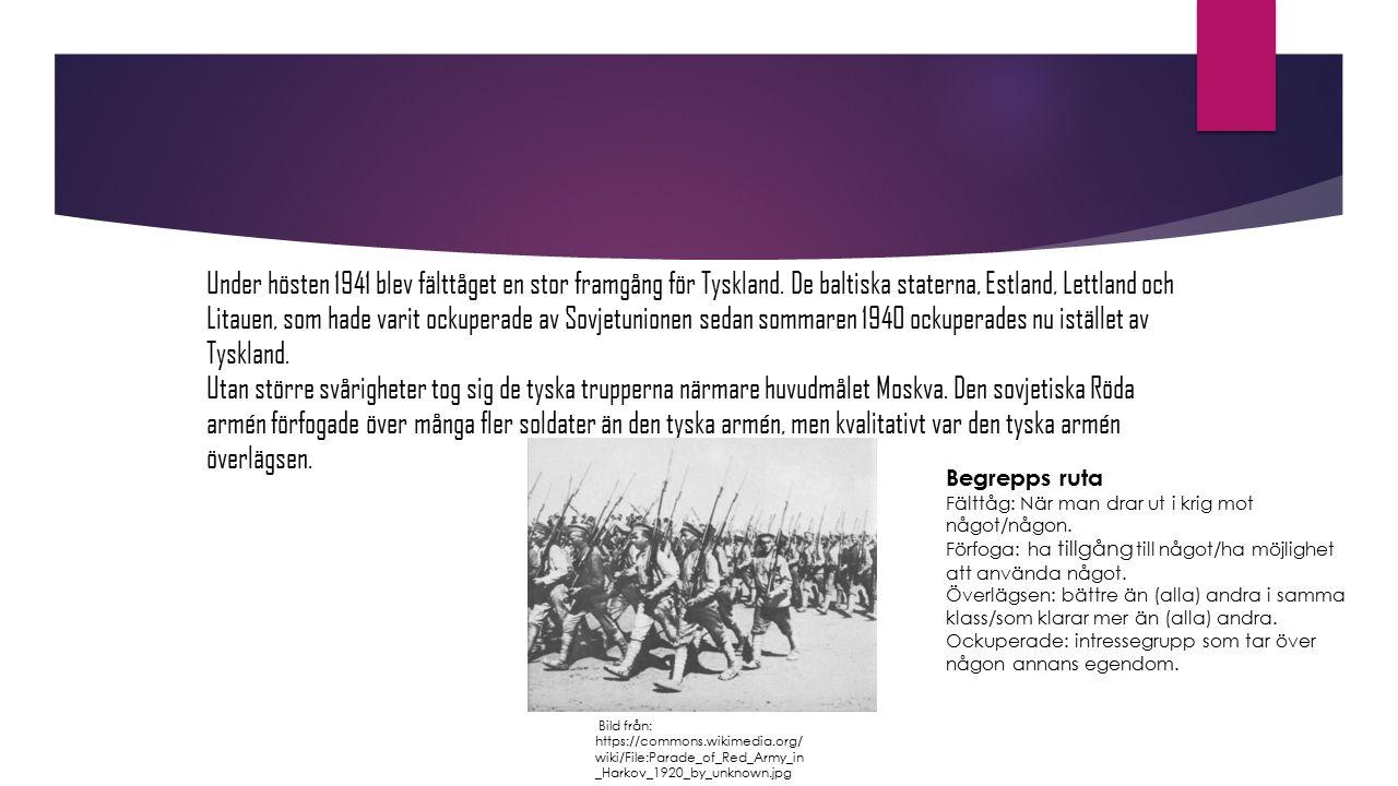 Under hösten 1941 blev fälttåget en stor framgång för Tyskland. De baltiska staterna, Estland, Lettland och Litauen, som hade varit ockuperade av Sovj