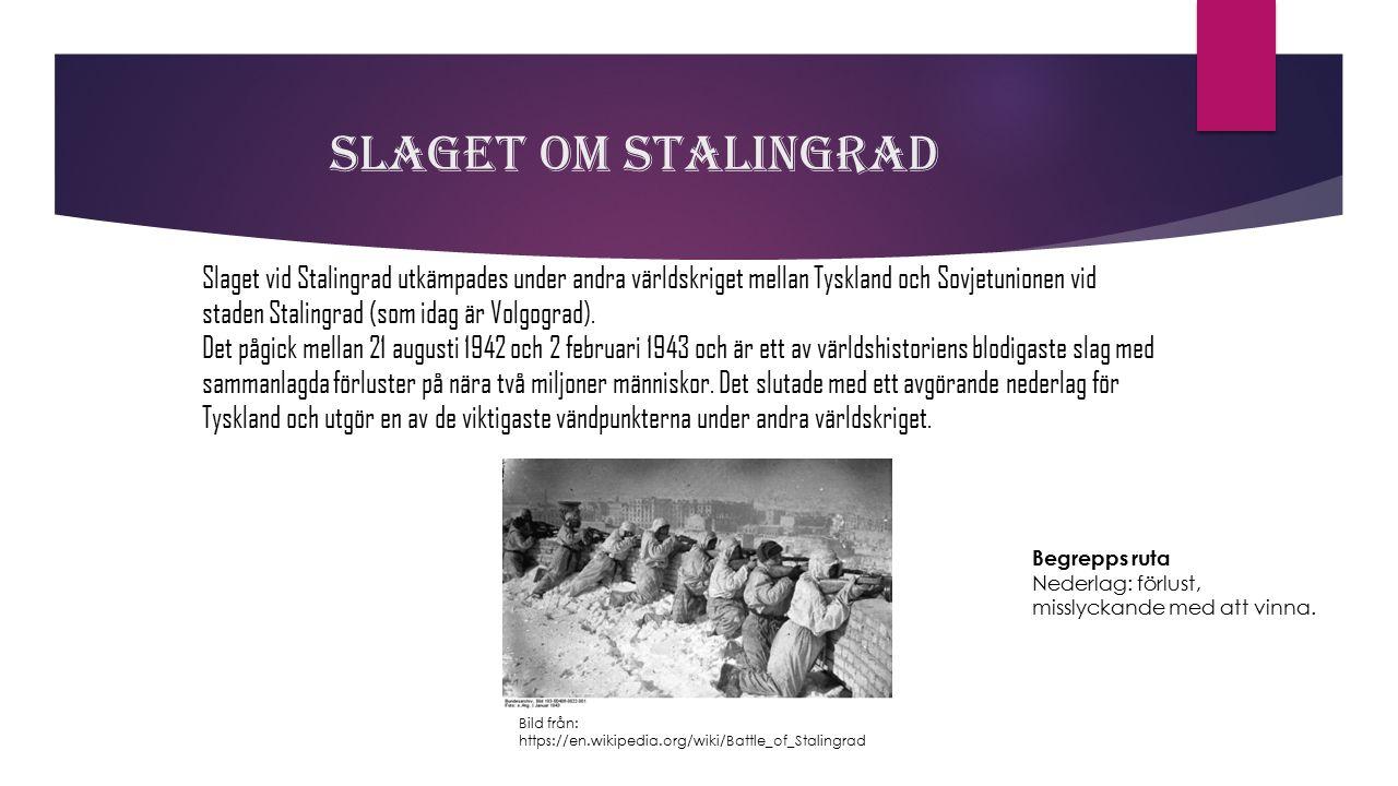 Slaget om Stalingrad Slaget vid Stalingrad utkämpades under andra världskriget mellan Tyskland och Sovjetunionen vid staden Stalingrad (som idag är Vo