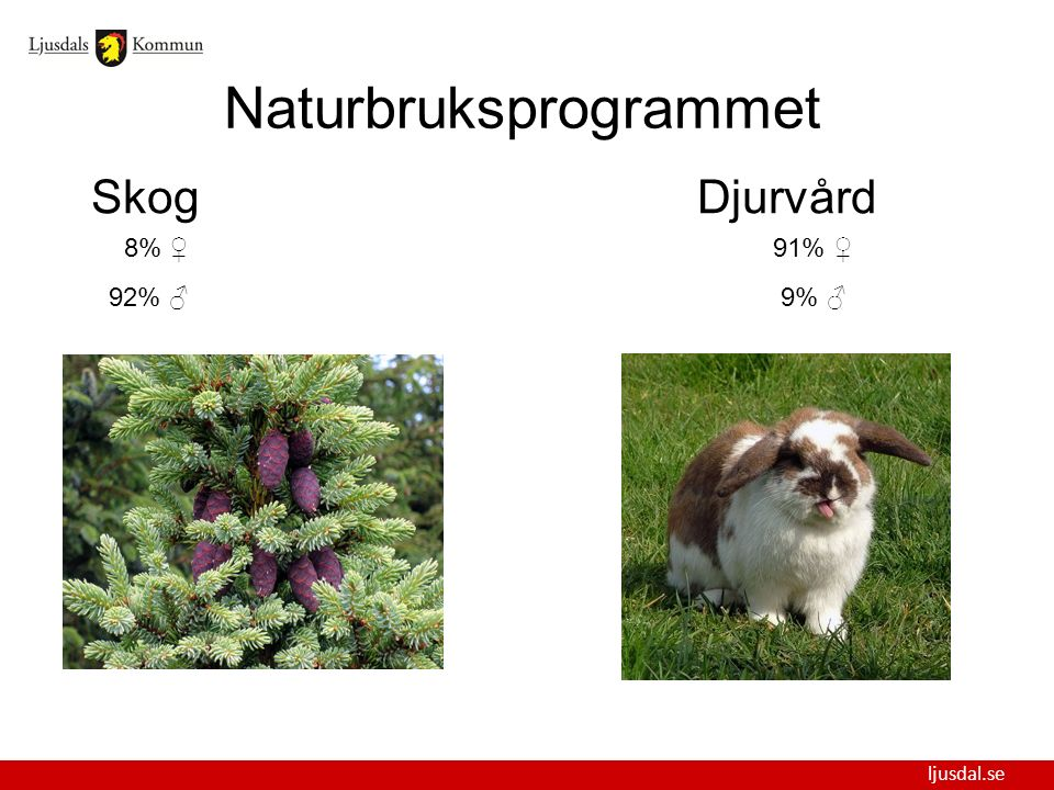 ljusdal.se Naturbruksprogrammet SkogDjurvård 8% ♀ 91% ♀ 92% ♂ 9% ♂