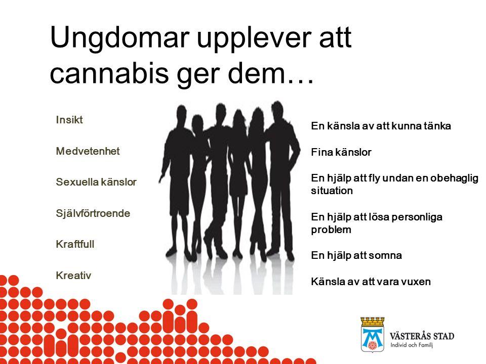 STEN 17 år Upptäcka/ Symptom Orosanmälan Prata med kollegor, Sten och vårdnadshavare