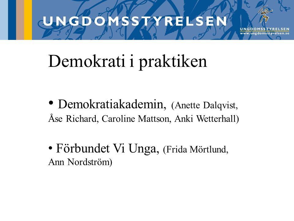 Demokrati i praktiken Demokratiakademin, (Anette Dalqvist, Åse Richard, Caroline Mattson, Anki Wetterhall) Förbundet Vi Unga, (Frida Mörtlund, Ann Nordström)