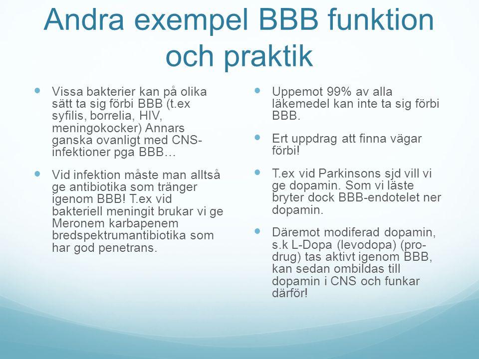 Andra exempel BBB funktion och praktik Vissa bakterier kan på olika sätt ta sig förbi BBB (t.ex syfilis, borrelia, HIV, meningokocker) Annars ganska o