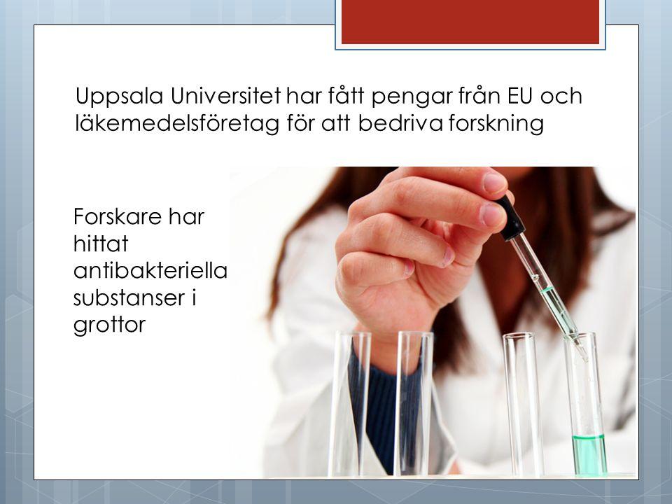 Uppsala Universitet har fått pengar från EU och läkemedelsföretag för att bedriva forskning Forskare har hittat antibakteriella substanser i grottor