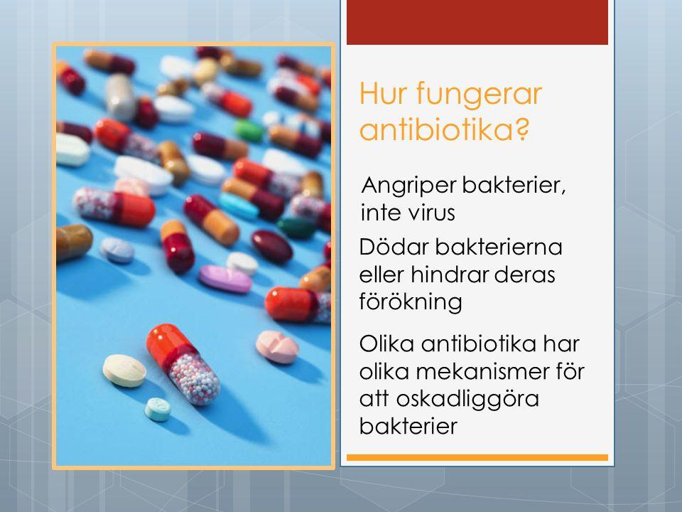 Hur fungerar antibiotika? Angriper bakterier, inte virus Dödar bakterierna eller hindrar deras förökning Olika antibiotika har olika mekanismer för at