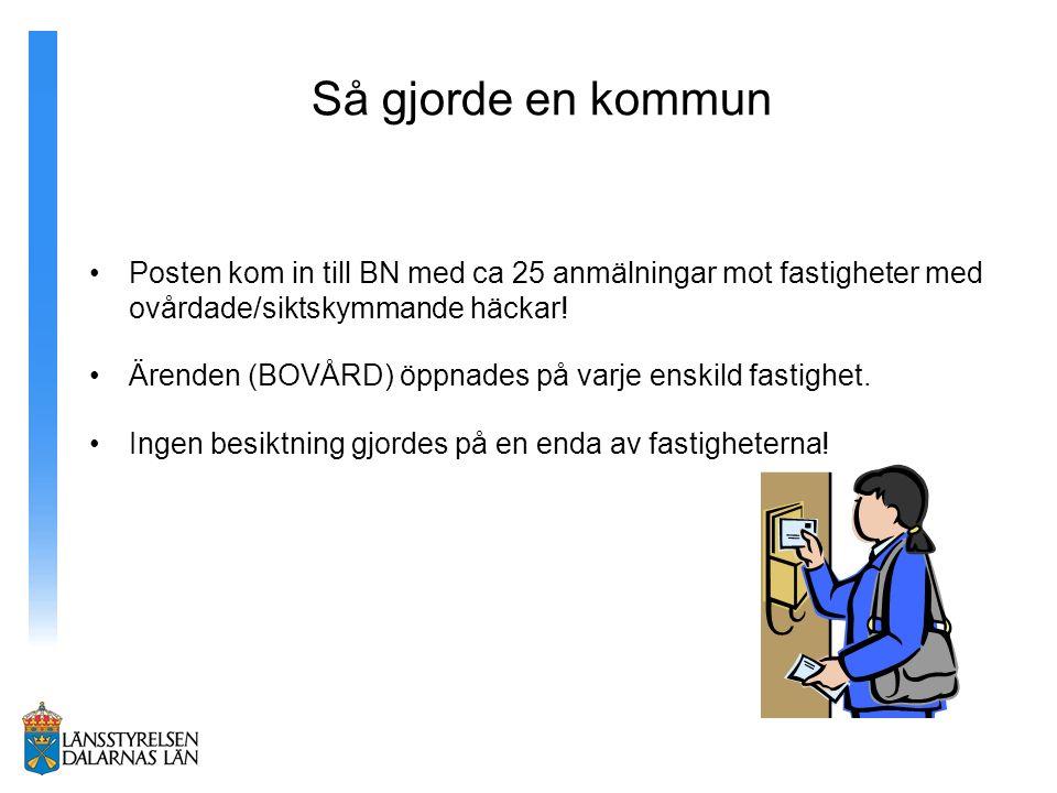 Så gjorde en kommun Posten kom in till BN med ca 25 anmälningar mot fastigheter med ovårdade/siktskymmande häckar.