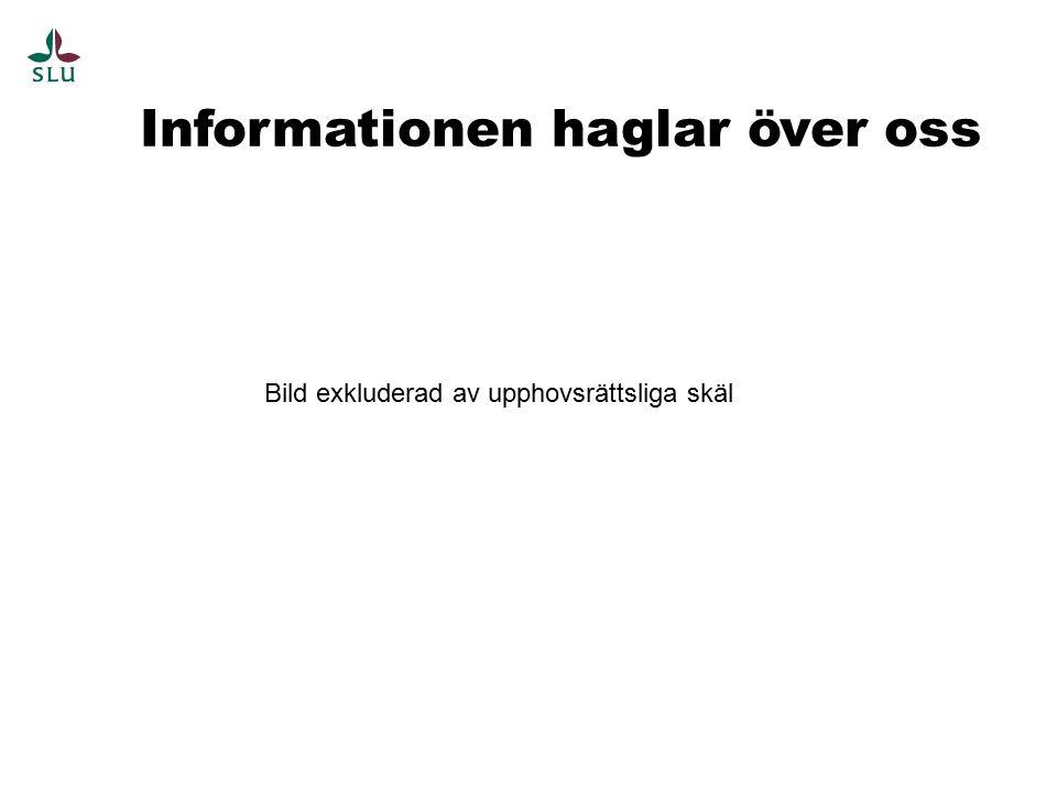 Filformat Överföring till bevarande Struktur Konver- tering Data- bärare M.M Ur Anteckningar till RAFS 2009:1 av Elisabeth Jarborn och Thomas Gäfvert Strategi För system X Strategi för digitala foton Strategi för webb Strategi för..