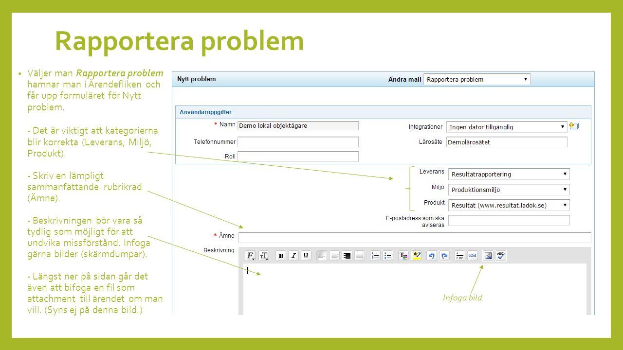 Väljer man Rapportera problem hamnar man i Ärendefliken och får upp formuläret för Nytt problem.