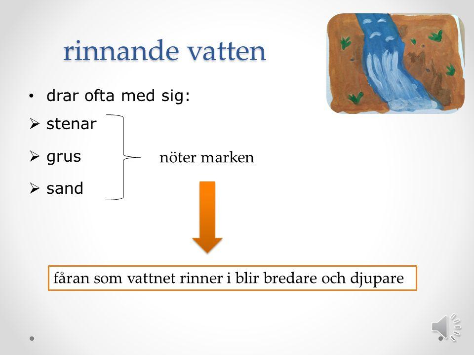 Rullstensåsar Smältvattnet rann i tunnlar under isen och det rinnande smältvattnet kallas för isälvar.