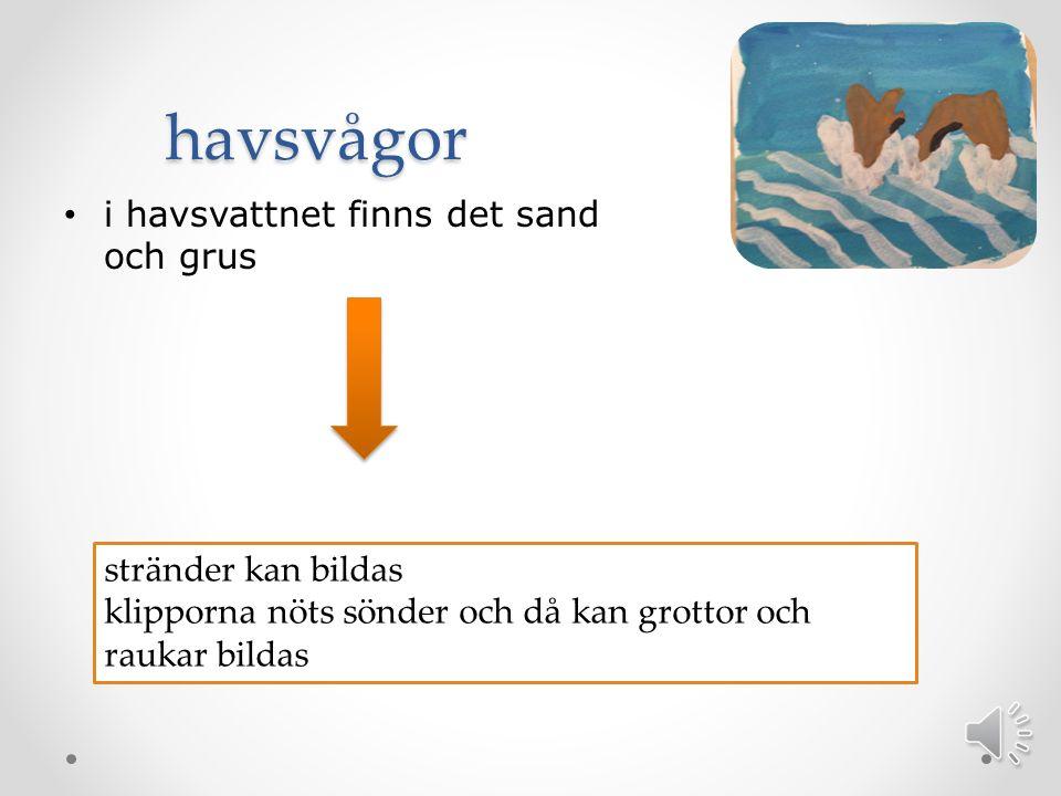 havsvågor i havsvattnet finns det sand och grus stränder kan bildas klipporna nöts sönder och då kan grottor och raukar bildas