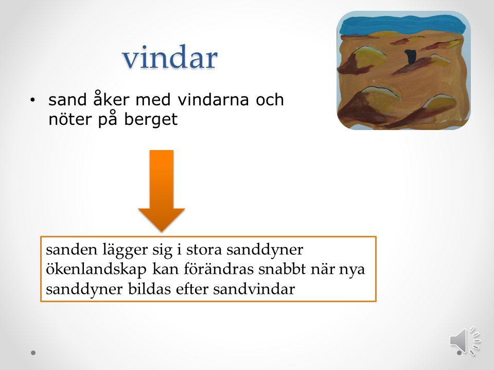 vindar sand åker med vindarna och nöter på berget sanden lägger sig i stora sanddyner ökenlandskap kan förändras snabbt när nya sanddyner bildas efter sandvindar