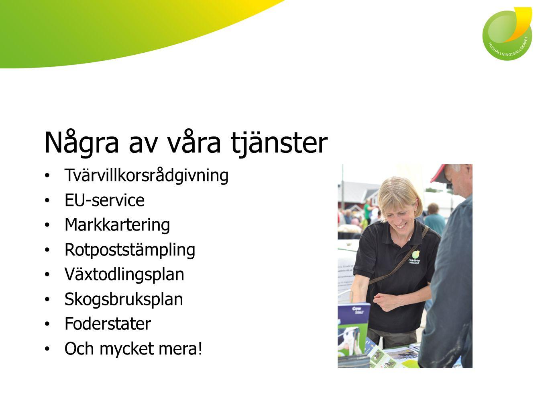 Några av våra tjänster Tvärvillkorsrådgivning EU-service Markkartering Rotpoststämpling Växtodlingsplan Skogsbruksplan Foderstater Och mycket mera!