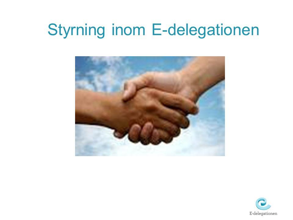 Styrning inom E-delegationen