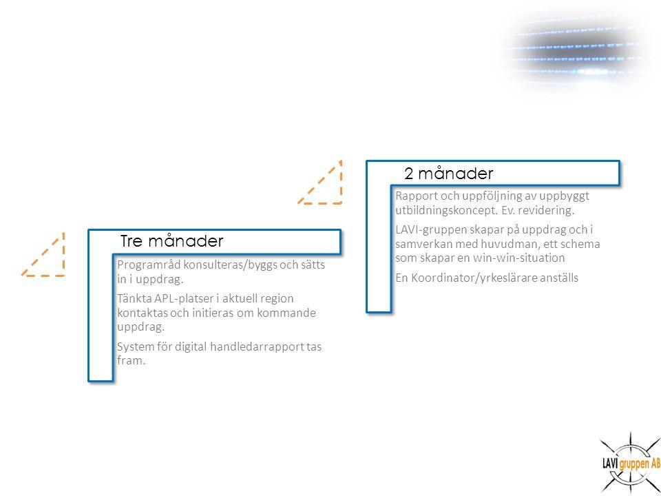 Programråd konsulteras/byggs och sätts in i uppdrag.