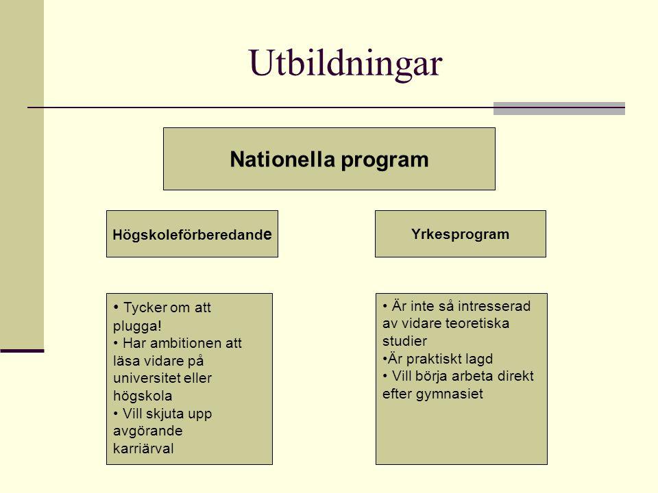 Utbildningar Nationella program Högskoleförberedand e Yrkesprogram Tycker om att plugga! Har ambitionen att läsa vidare på universitet eller högskola