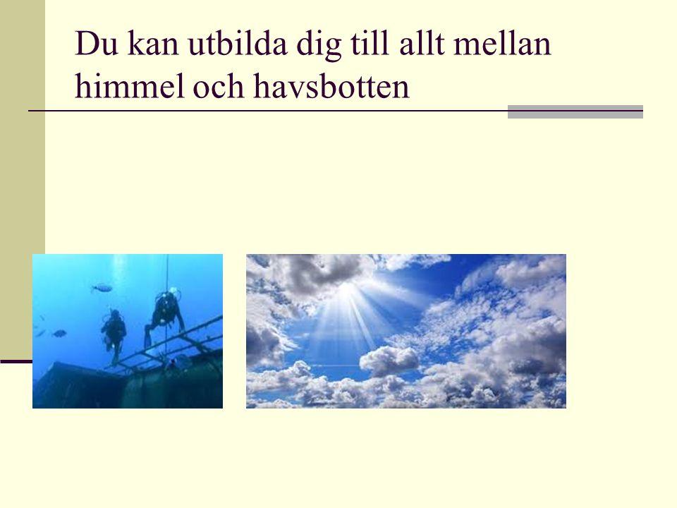 Du kan utbilda dig till allt mellan himmel och havsbotten