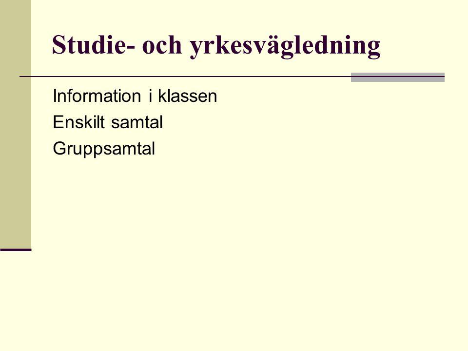 Studie- och yrkesvägledning Information i klassen Enskilt samtal Gruppsamtal