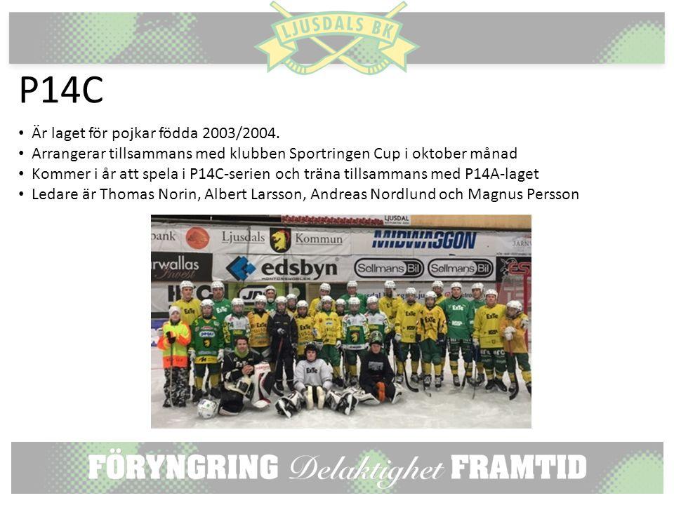 P14C Är laget för pojkar födda 2003/2004.