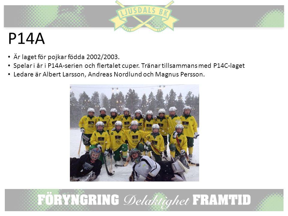 P14A Är laget för pojkar födda 2002/2003. Spelar i år i P14A-serien och flertalet cuper.