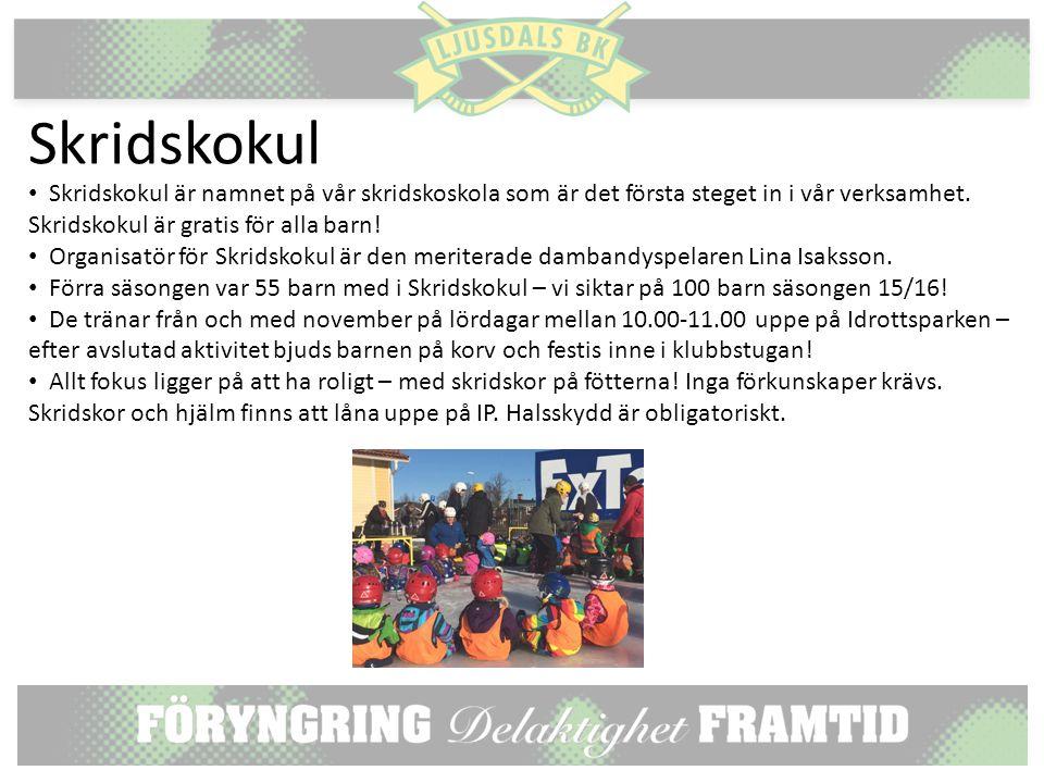 Skridskokul Skridskokul är namnet på vår skridskoskola som är det första steget in i vår verksamhet.