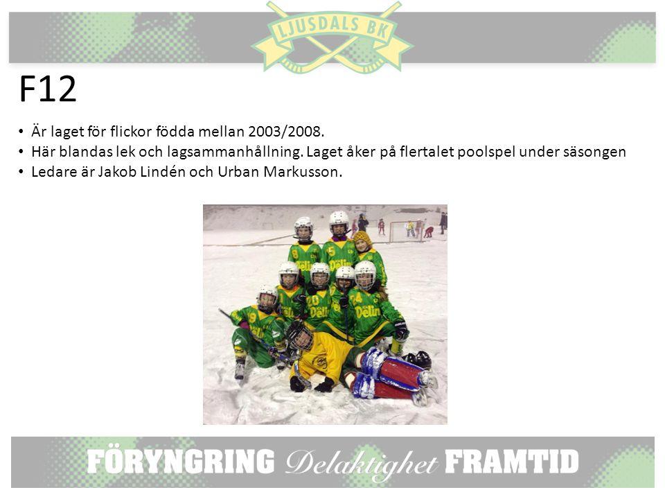 F12 Är laget för flickor födda mellan 2003/2008. Här blandas lek och lagsammanhållning.