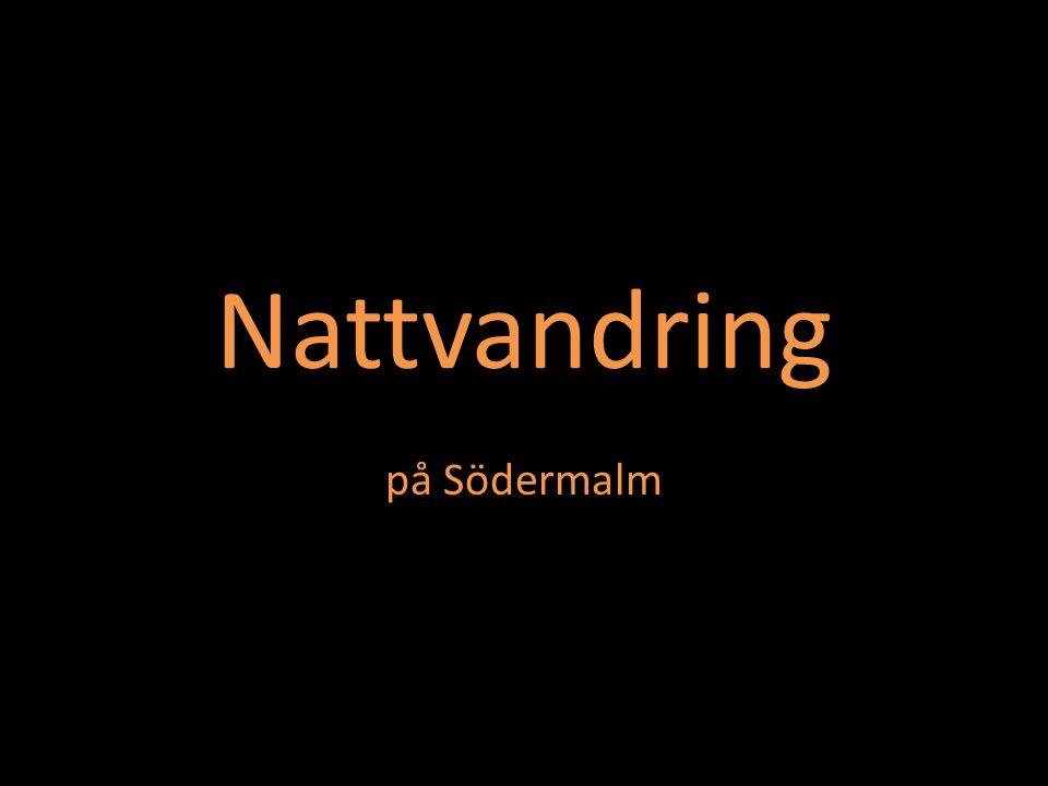 Nattvandring på Södermalm