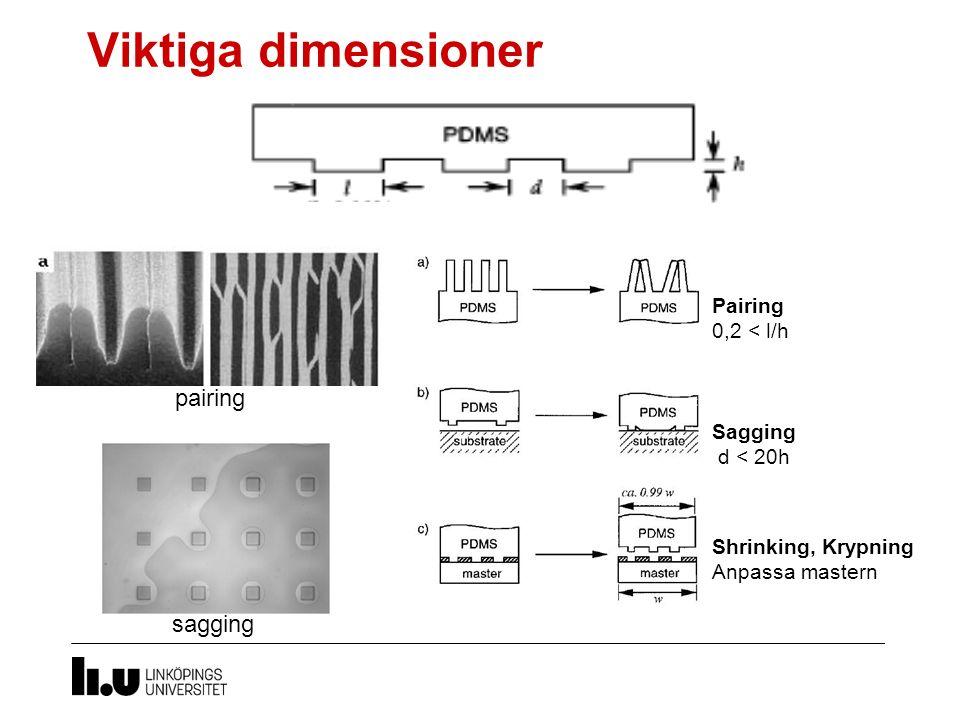 Viktiga dimensioner Pairing 0,2 < l/h Sagging d < 20h Shrinking, Krypning Anpassa mastern sagging pairing