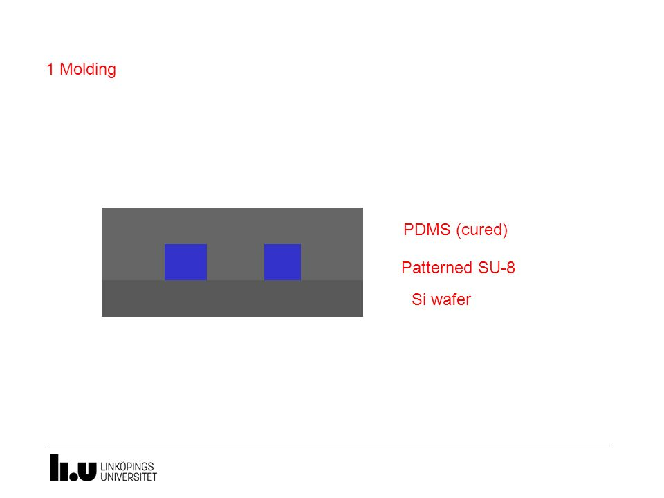 Si wafer Patterned SU-8 PDMS (uncured) PDMS (cured) 1 Molding