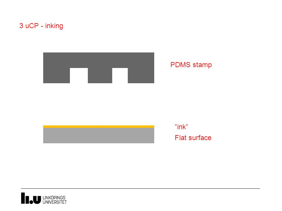 "PDMS stamp 3 uCP - inking ""ink"" Flat surface"