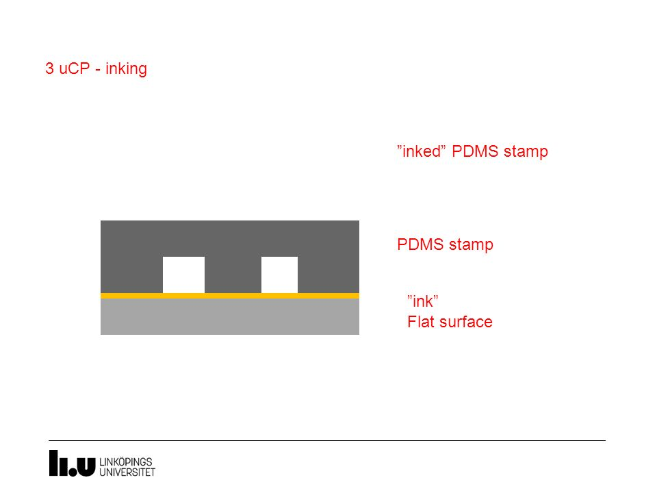 "PDMS stamp 3 uCP - inking ""ink"" Flat surface ""inked"" PDMS stamp"