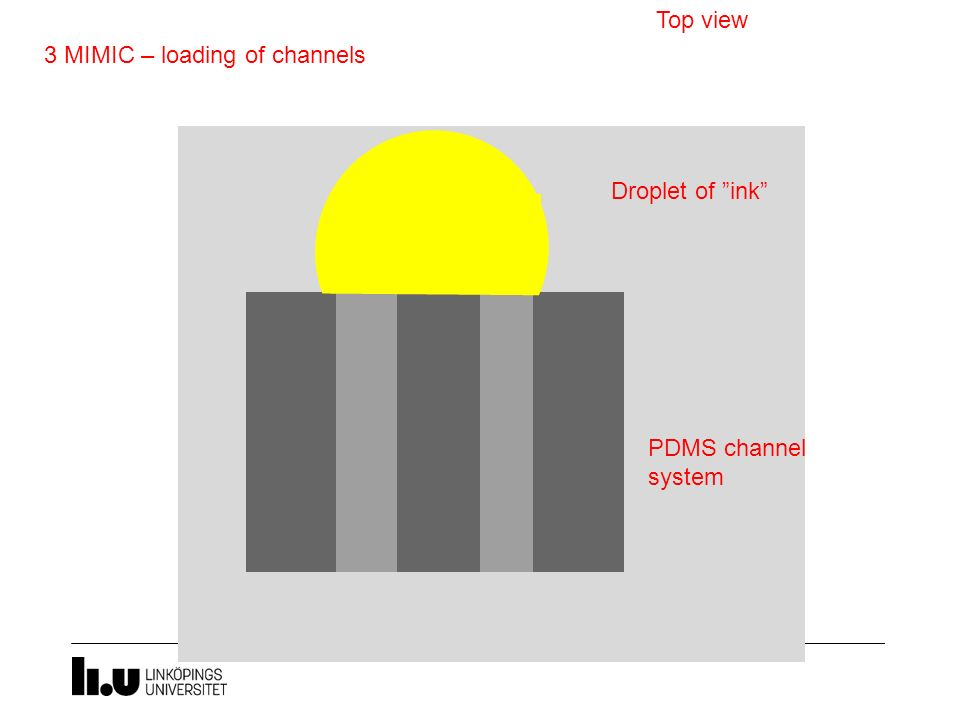 "3 MIMIC – loading of channels Top view Droplet of ""ink"" PDMS channel system"