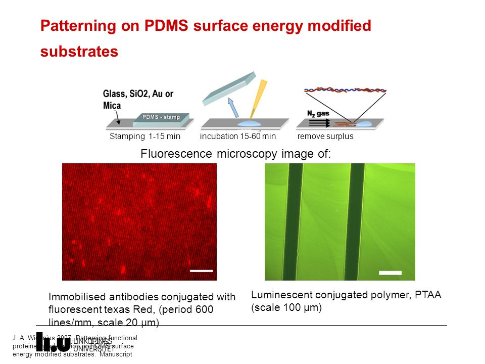 Patterning on PDMS surface energy modified substrates J. A. Wigenius 2007, Patterning functional proteins by adsorption on PDMS surface energy modifie