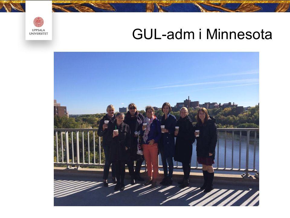 GUL-adm i Minnesota