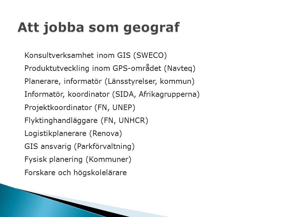 Konsultverksamhet inom GIS (SWECO) Produktutveckling inom GPS-området (Navteq) Planerare, informatör (Länsstyrelser, kommun) Informatör, koordinator (SIDA, Afrikagrupperna) Projektkoordinator (FN, UNEP) Flyktinghandläggare (FN, UNHCR) Logistikplanerare (Renova) GIS ansvarig (Parkförvaltning) Fysisk planering (Kommuner) Forskare och högskolelärare