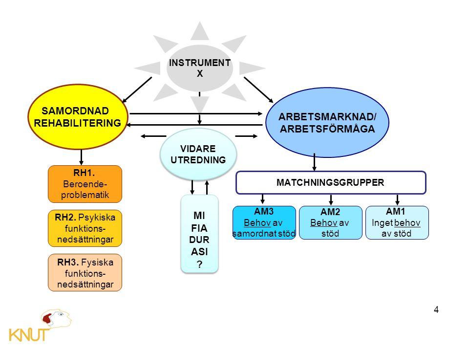4 SAMORDNAD REHABILITERING ARBETSMARKNAD/ ARBETSFÖRMÅGA VIDARE UTREDNING VIDARE UTREDNING INSTRUMENT X RH1.