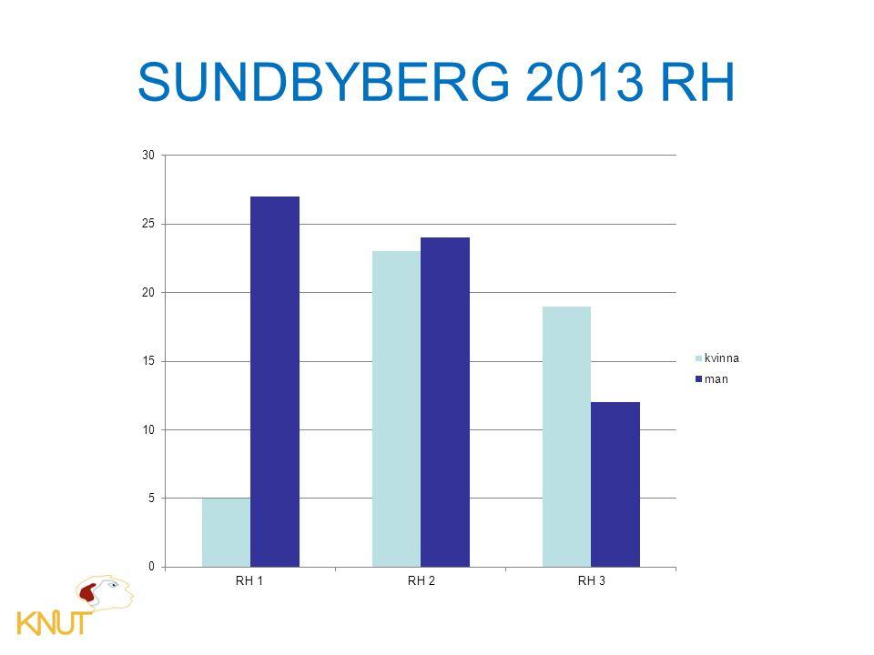 SUNDBYBERG 2013 RH