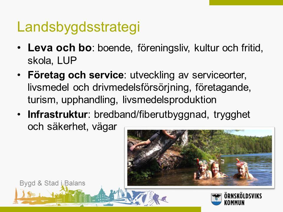 Landsbygdsstrategi Leva och bo : boende, föreningsliv, kultur och fritid, skola, LUP Företag och service: utveckling av serviceorter, livsmedel och dr