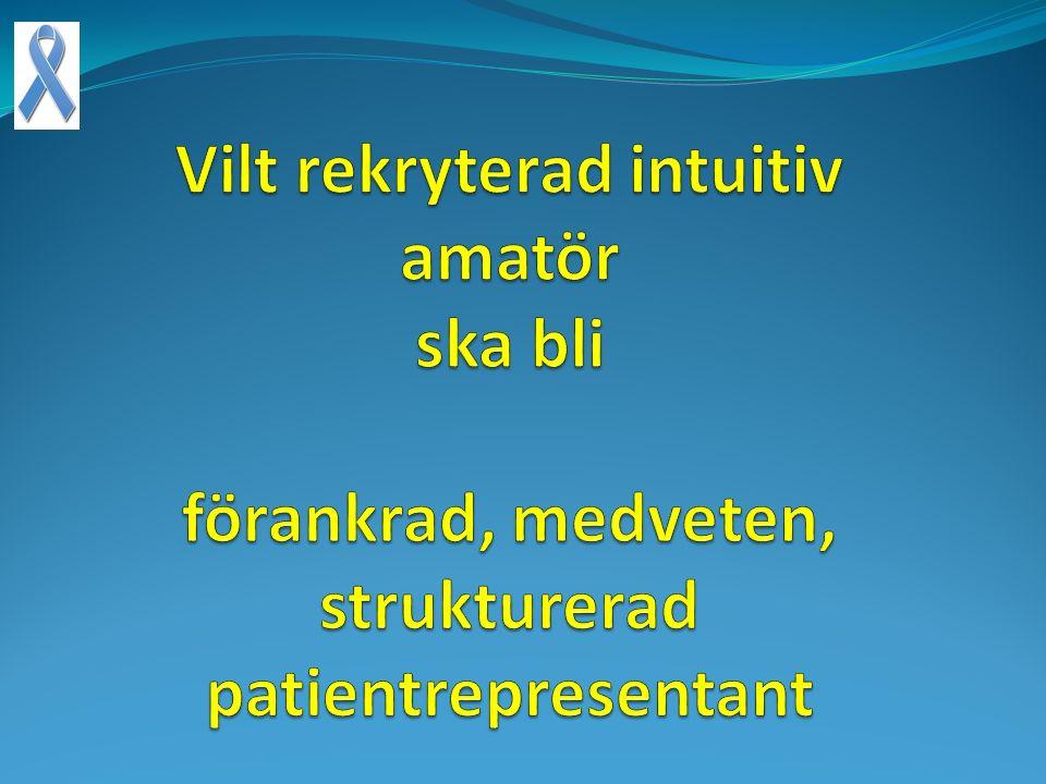 Mervärden Fokus Prioritering Vårdkedjan Info Samverkan Återföring Förankring Strategi Nothing about us without us