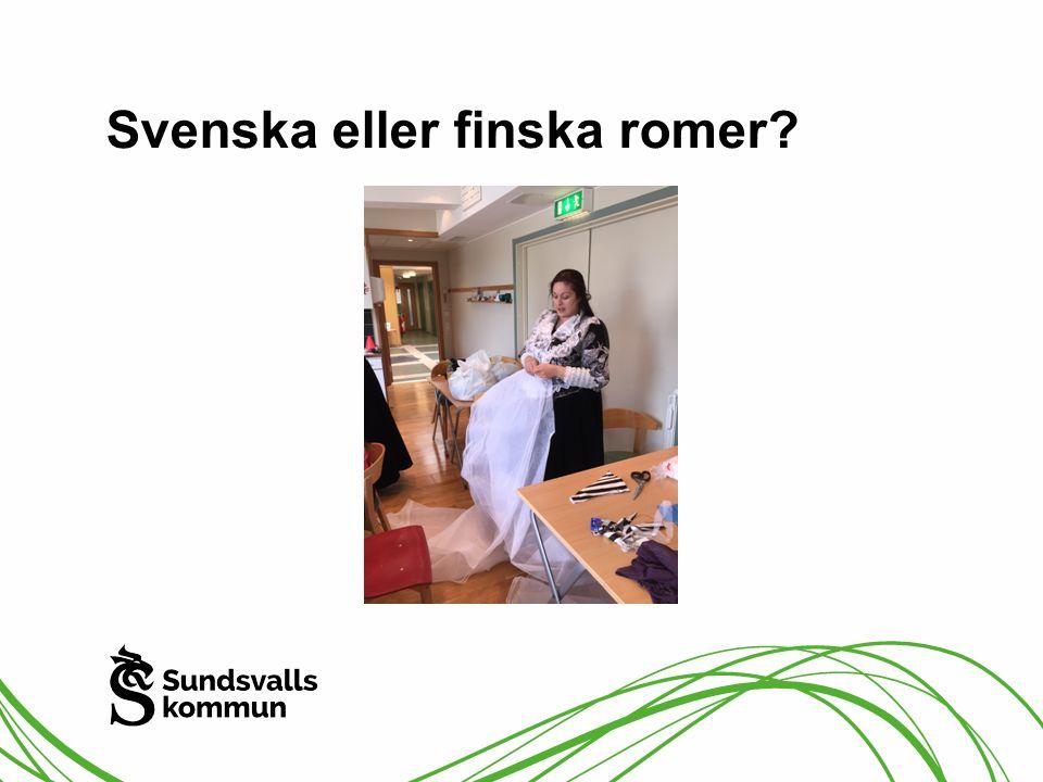 Svenska eller finska romer?