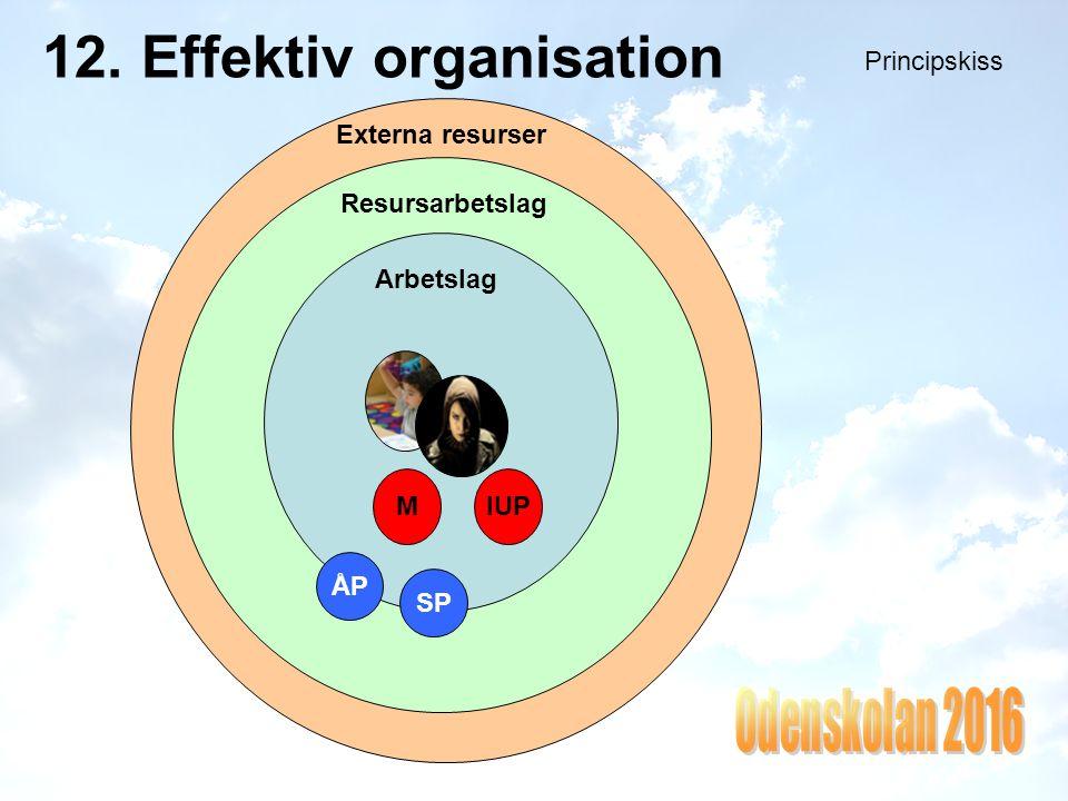 12. Effektiv organisation Principskiss Arbetslag MIUP Resursarbetslag ÅP SP Externa resurser