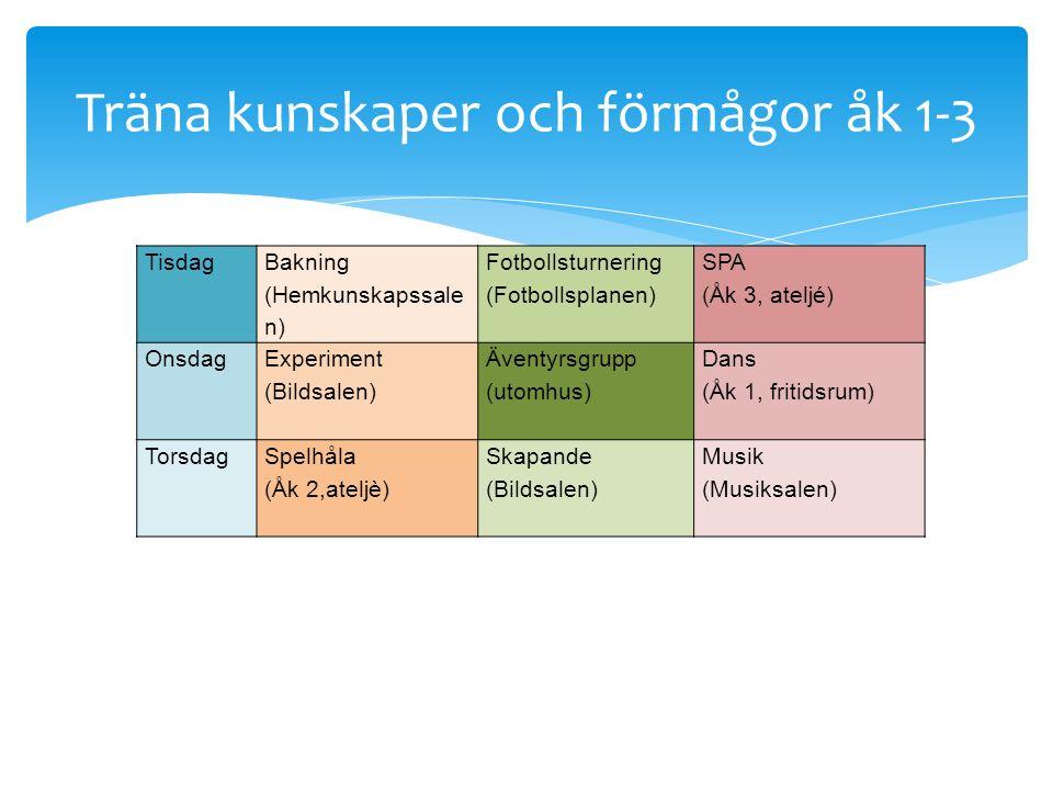 Tisdag Bakning (Hemkunskapssale n) Fotbollsturnering (Fotbollsplanen) SPA (Åk 3, ateljé) Onsdag Experiment (Bildsalen) Äventyrsgrupp (utomhus) Dans (Å