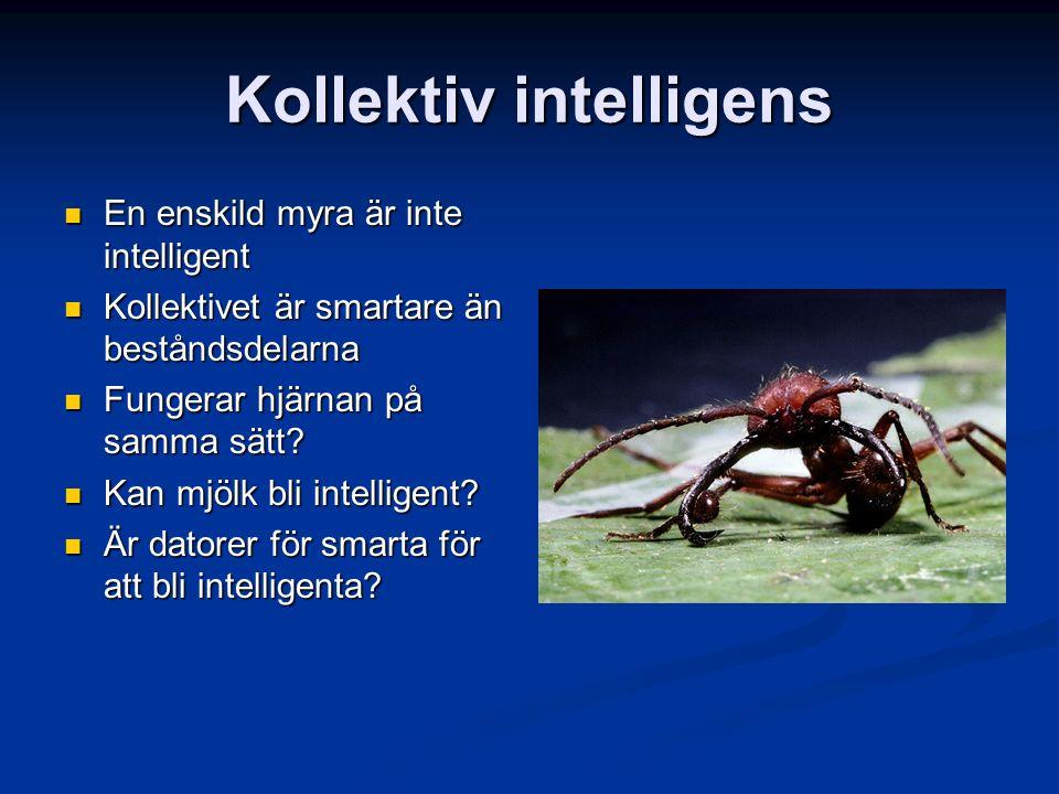 Kollektiv intelligens En enskild myra är inte intelligent En enskild myra är inte intelligent Kollektivet är smartare än beståndsdelarna Kollektivet är smartare än beståndsdelarna Fungerar hjärnan på samma sätt.