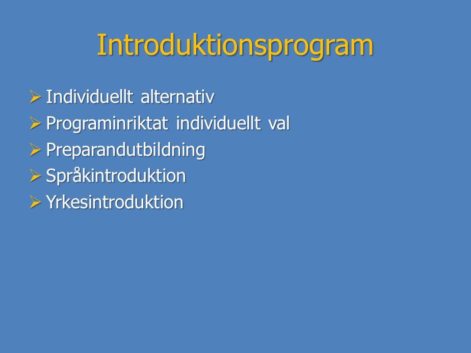 Introduktionsprogram  Individuellt alternativ  Programinriktat individuellt val  Preparandutbildning  Språkintroduktion  Yrkesintroduktion