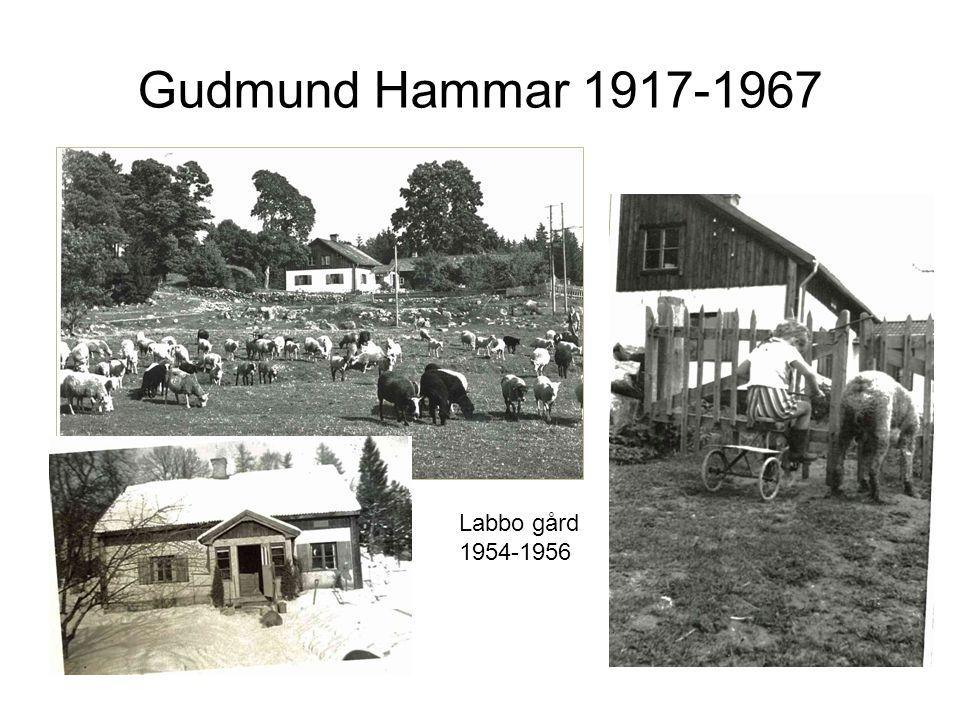 Gudmund Hammar 1917-1967 Labbo gård 1954-1956