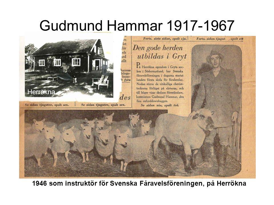 Gudmund Hammar 1917-1967 1946 som instruktör för Svenska Fåravelsföreningen, på Herrökna Herrökna