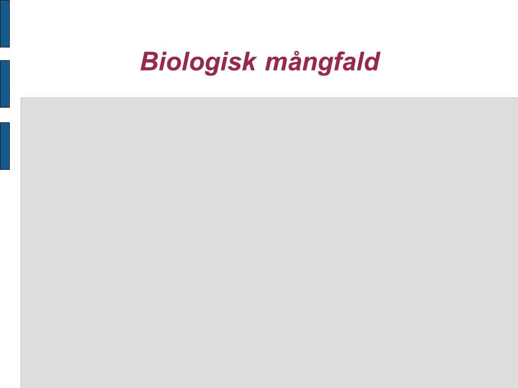 Biologisk mångfald